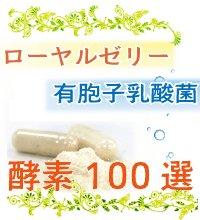 酵素100選