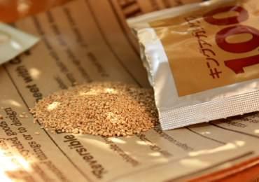数種類からなる植物性配糖体及び、酵母より抽出された『King Agaricus100』